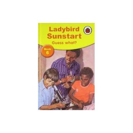 Ladybird Sunstart Book 6 - Guess What